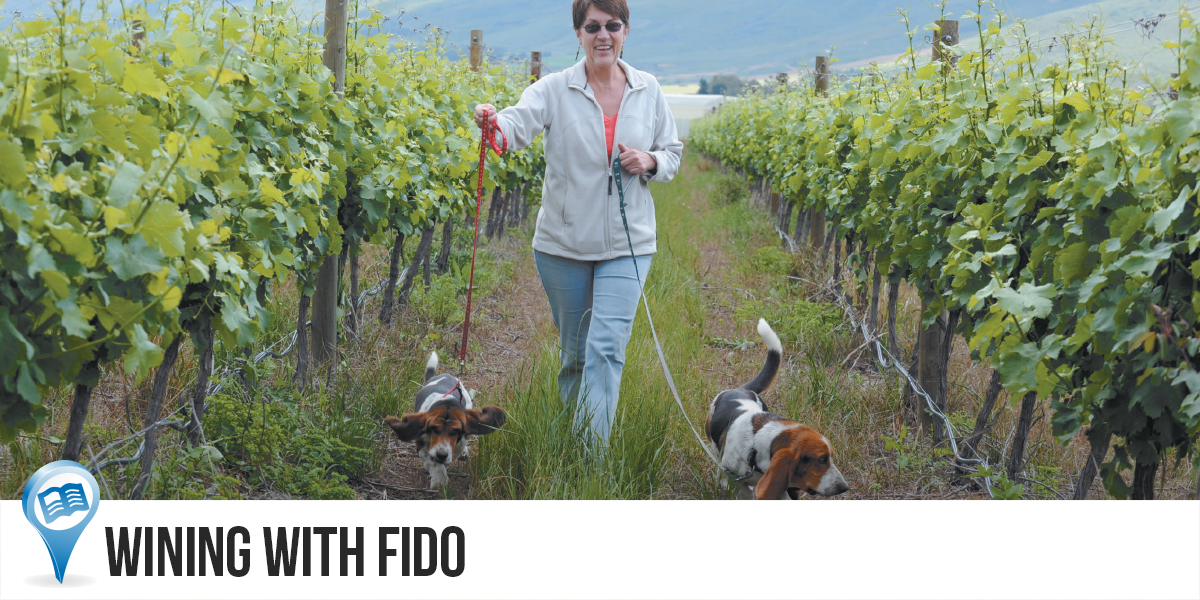 Wining-With-Fido