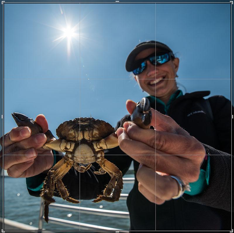 Brinkerhoff - Crab