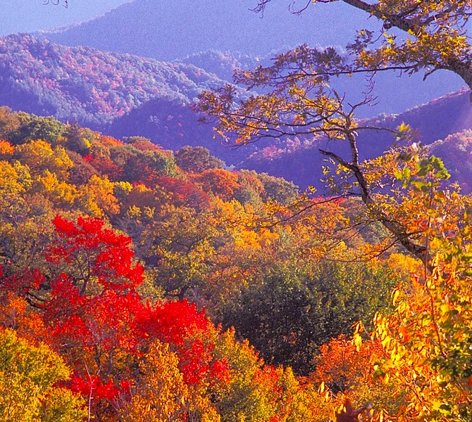 Fall Foliage Smoky Mountains 2020.Smoky Mountains Hangout Sold Out Waiting List Escapees