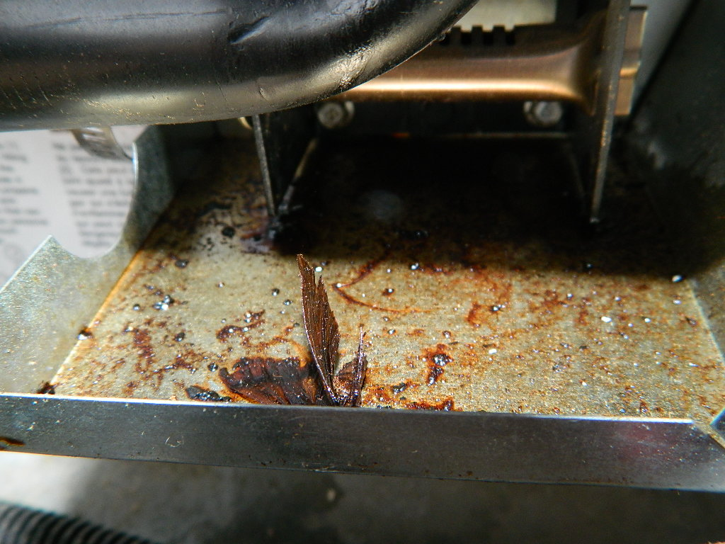 Brown Oily Residue in the Burner Housing